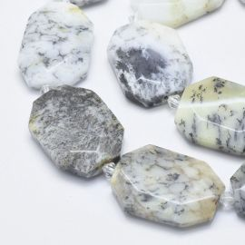 Natūralus Opal Dendritas 31-36x24-26x6-8 mm 1 pc