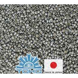 TOHO® Biseris PermaFinish - Frosted Galvanized Blue Slate TR-11-PF565F 11/0 (2,2 mm) 10 g.