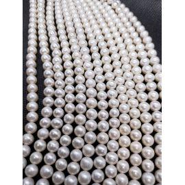 Natūralūs Gėlavandeniai perlai A klasės 7,5-8,5 mm. ,1 gija