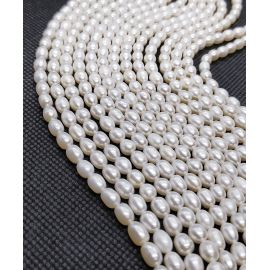 Natural Freshwater Pearls Class A 5.5-6x4.5-5 mm. ,1 thread