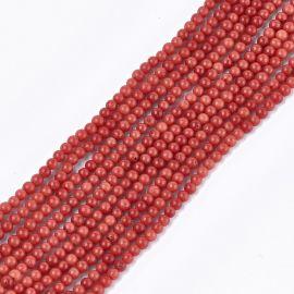 Sea Bamboo coral (coral imitation) 2-3 mm., 1 thread