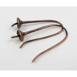Žalvariniai kabliukai auskarams, 1 pora 27x11 mm