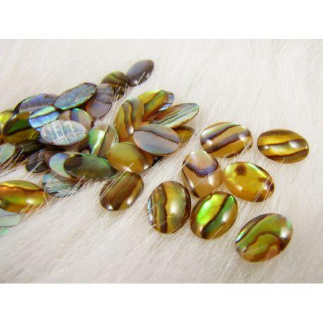 Abalone SHELL kabošonas,geltonai žalios spalvos, margas, ovalo formos, dydis 8x6x2 mm
