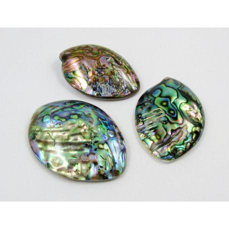 Abalone kriauklės kabošonas, rusvai žalios, dydis 52x39 mm